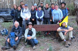Blue Mountains conservationists develop app to prevent volunteers harming bushfire impacted animals and habitat